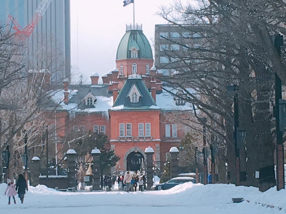 北海道札幌市で不動産投資を始めるなら雪の季節の下見がマスト!